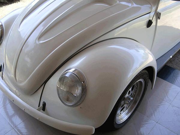 Silver Crystal Phantom Pearl on white bug.